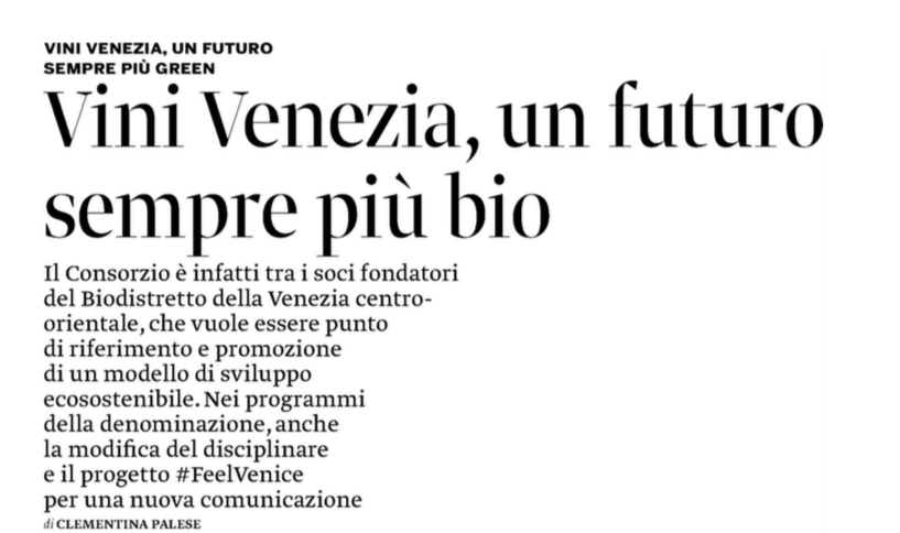 Articolo Corriere Vinicolo